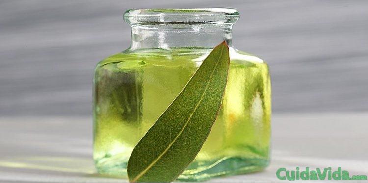 Cómo hacer aceite de eucalipto en casa